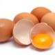 تخم مرغ و طب سنتی