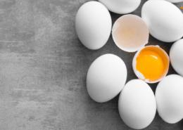 تخم مرغ مایع پاستوریزه - زرده