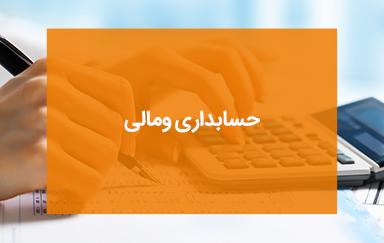 حسابداری و مالی شرکت تلاونگ