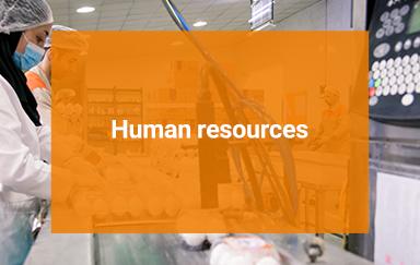 Telavang's human resources